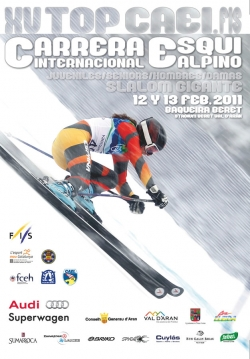 Poster TOP CAEI. 2011